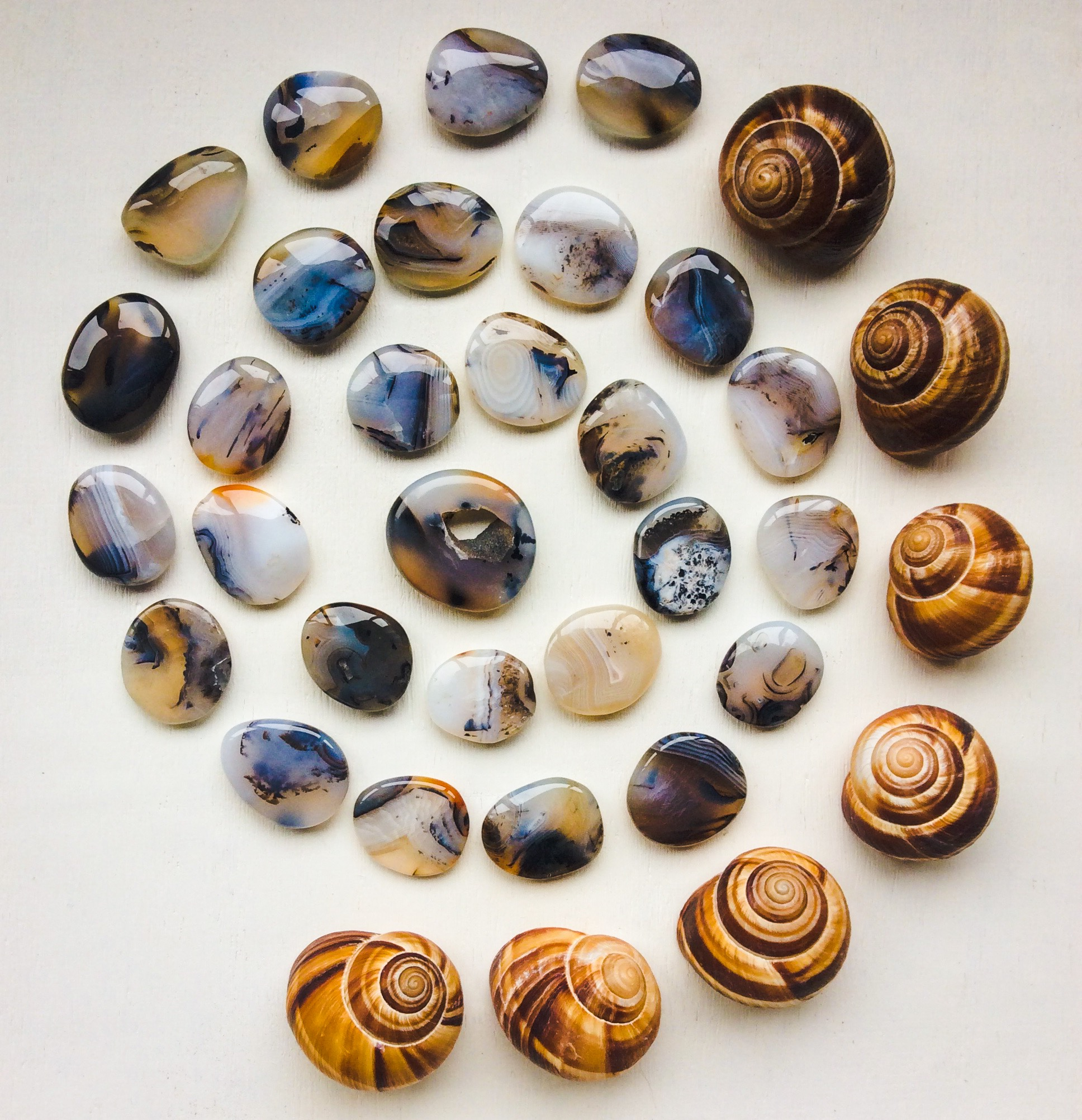 Montana Agate and Escargot Snails