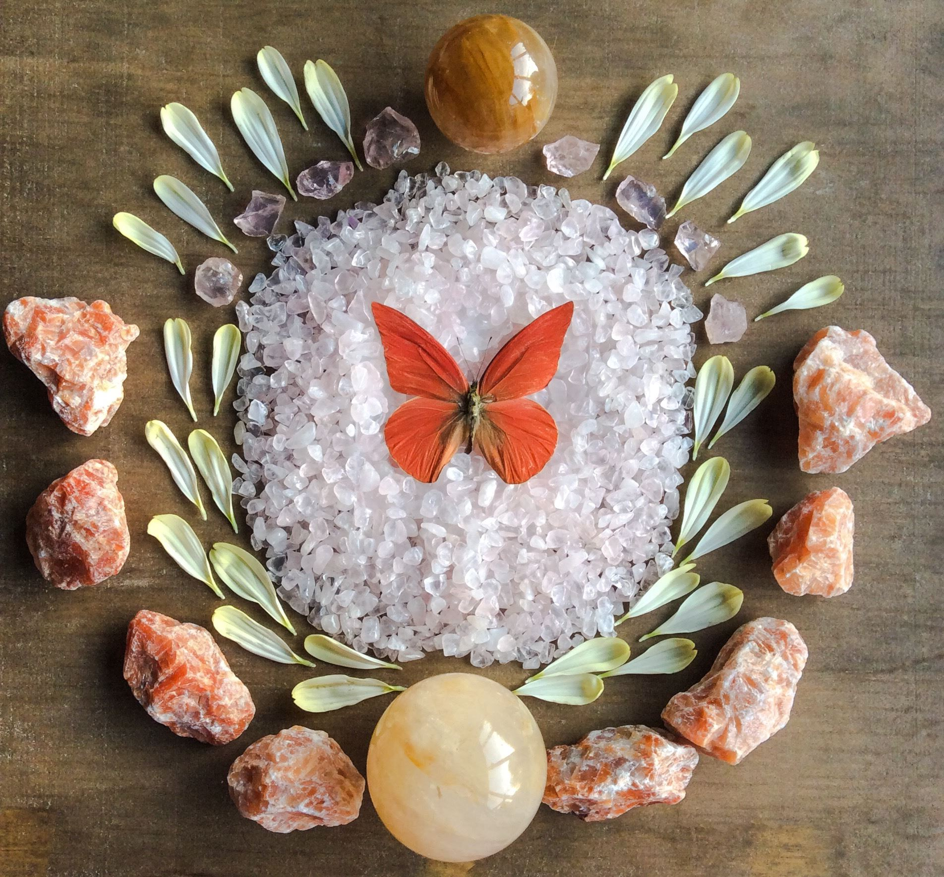 Golden Healer Quartz, Rose Quartz, Orange Calcite, Dahlia petals and Appias Zarinda
