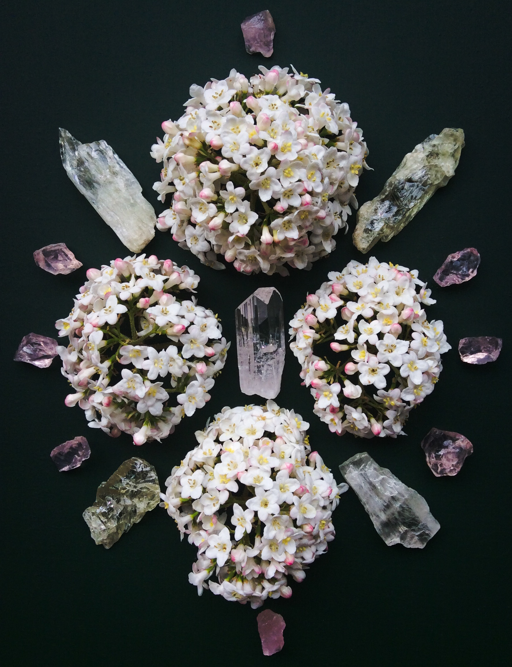 Danburite, Hiddenite, Rose Quartz and Viburnum