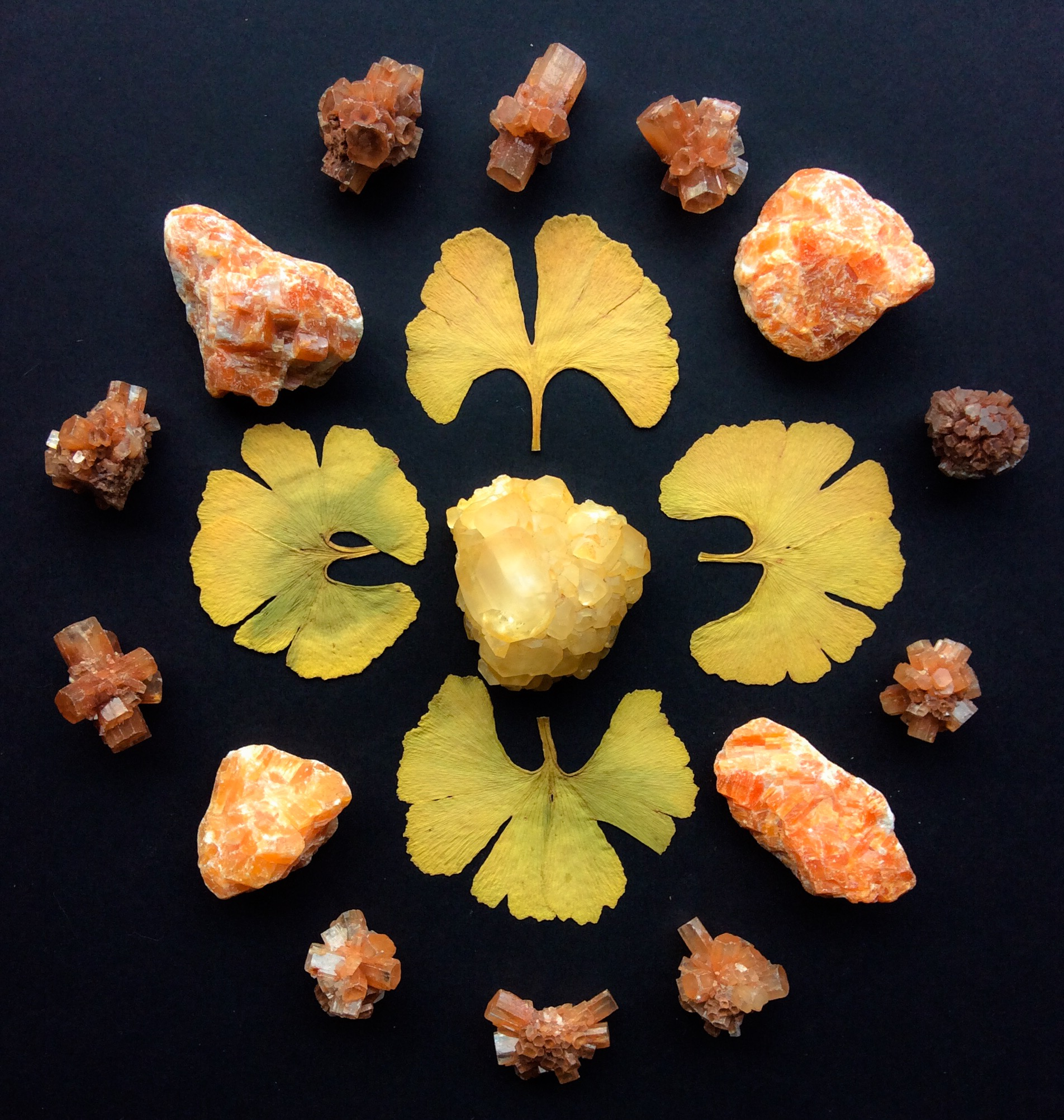 Aragonite, Honey Calcite, Orange Calcite and Gingko leaves