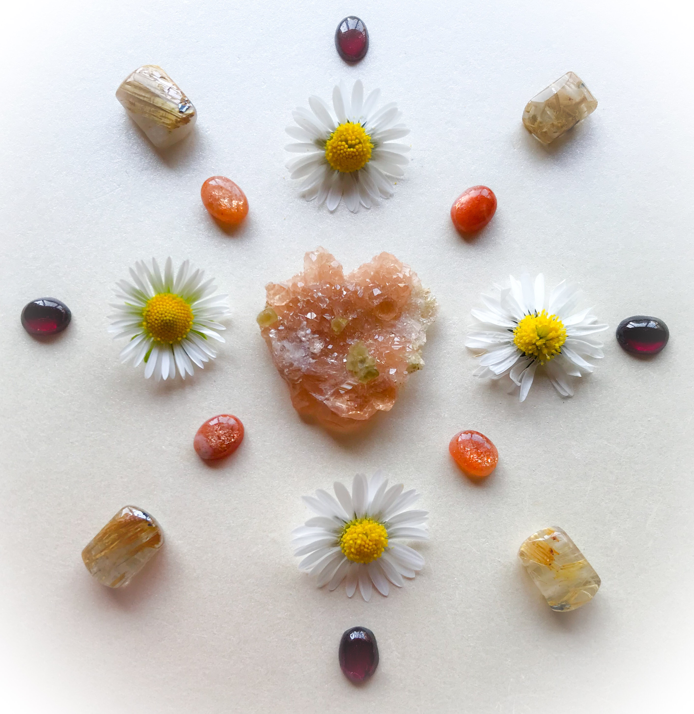 Hessonite, Sunstone, Rutile Quartz, Garnet and Bellis perennis