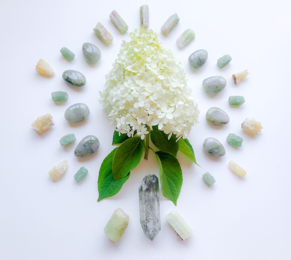 Chlorite Quartz, Bi-color Tourmaline, Beryl, Aventurine, Honey Calcite, and Hydrangea paniculata