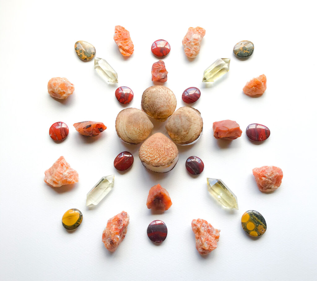 Shells, Red Jasper, Carnelian, Citrine, Organge Calcite, and Bumblebee Jasper