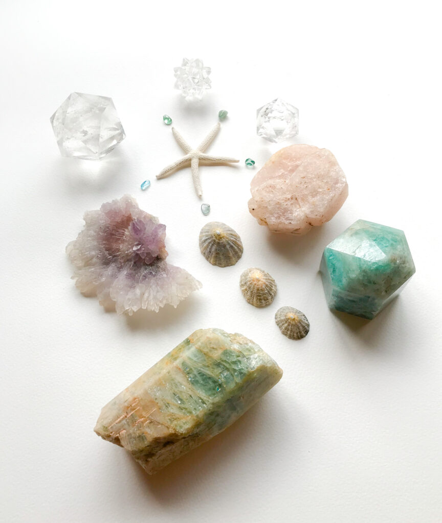 Asteroidea, Aqauamarine, Shells, Morganite, Amethyst Rose, Quartz