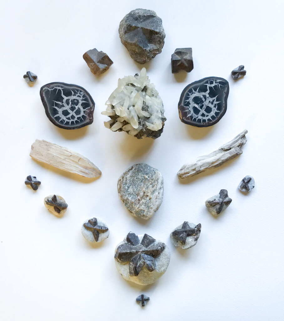 Calcite on Pyrite, Schist, Petrified Wood, Staurolite, Septarian